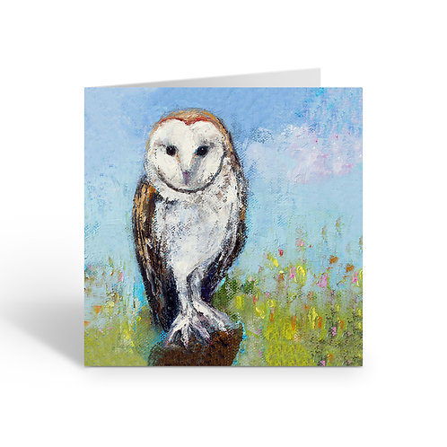 WHOLESALE PACK OF 6 White Barn Owl - W039