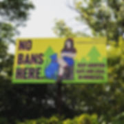 2019 MN Bilboard Project, KT Lindermann, Pro-Choice, lumber femme, blue dog, Minnesota, No Bans Here, Keep Abortion Safe and Legal in Minnesota