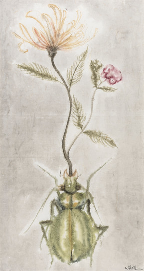 Winter-Insect, Summer-Herb No.1