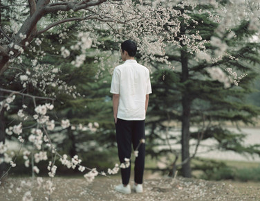 Xie and the cherry tree, Hangzhou, China, 2016, from the series Soft Thorn.