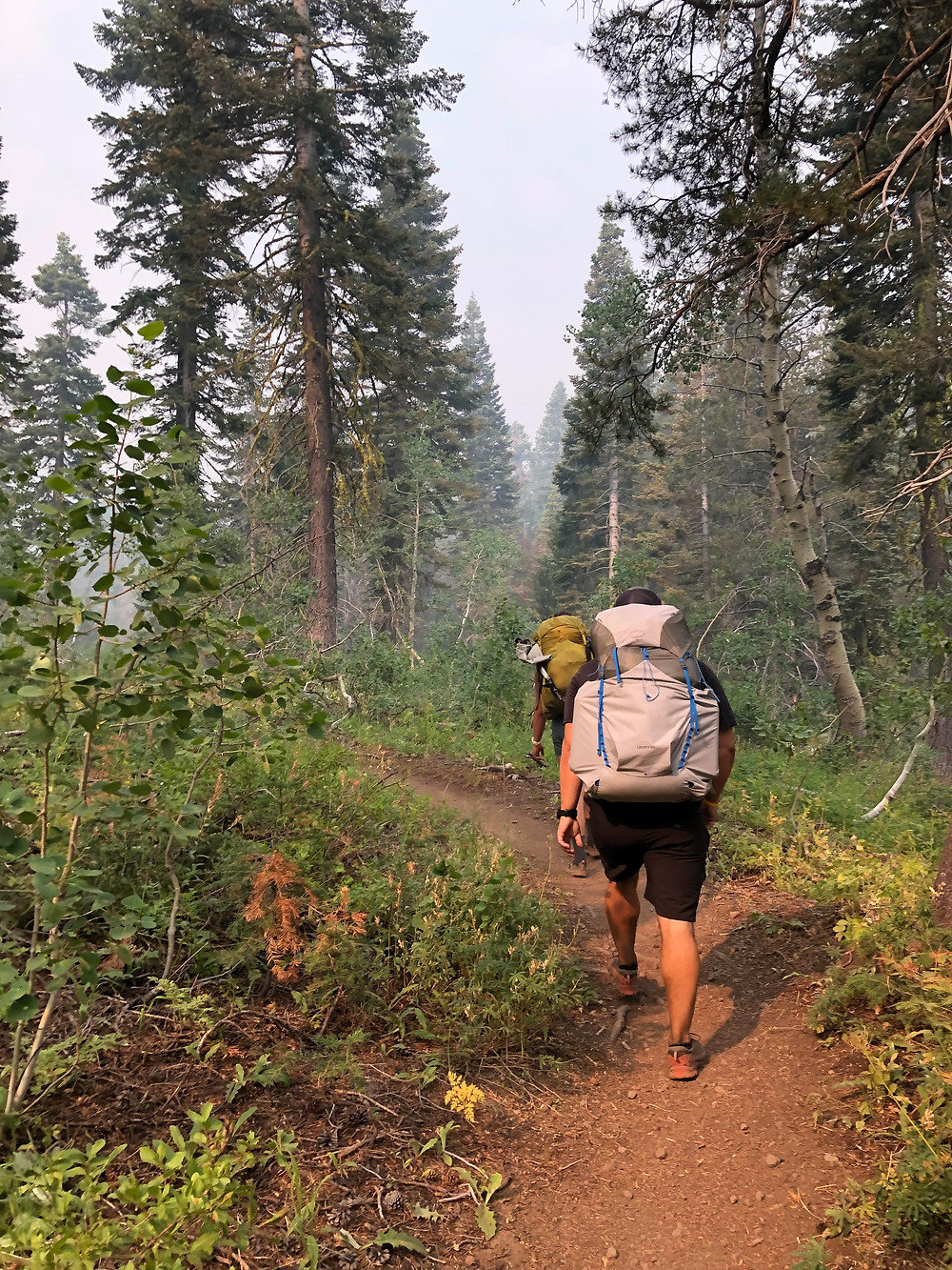 Smoke and haze batter the lungs of backpackers along the Tahoe Rim Trail