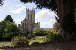 St Edmundsbury Cathedral with tree in fo