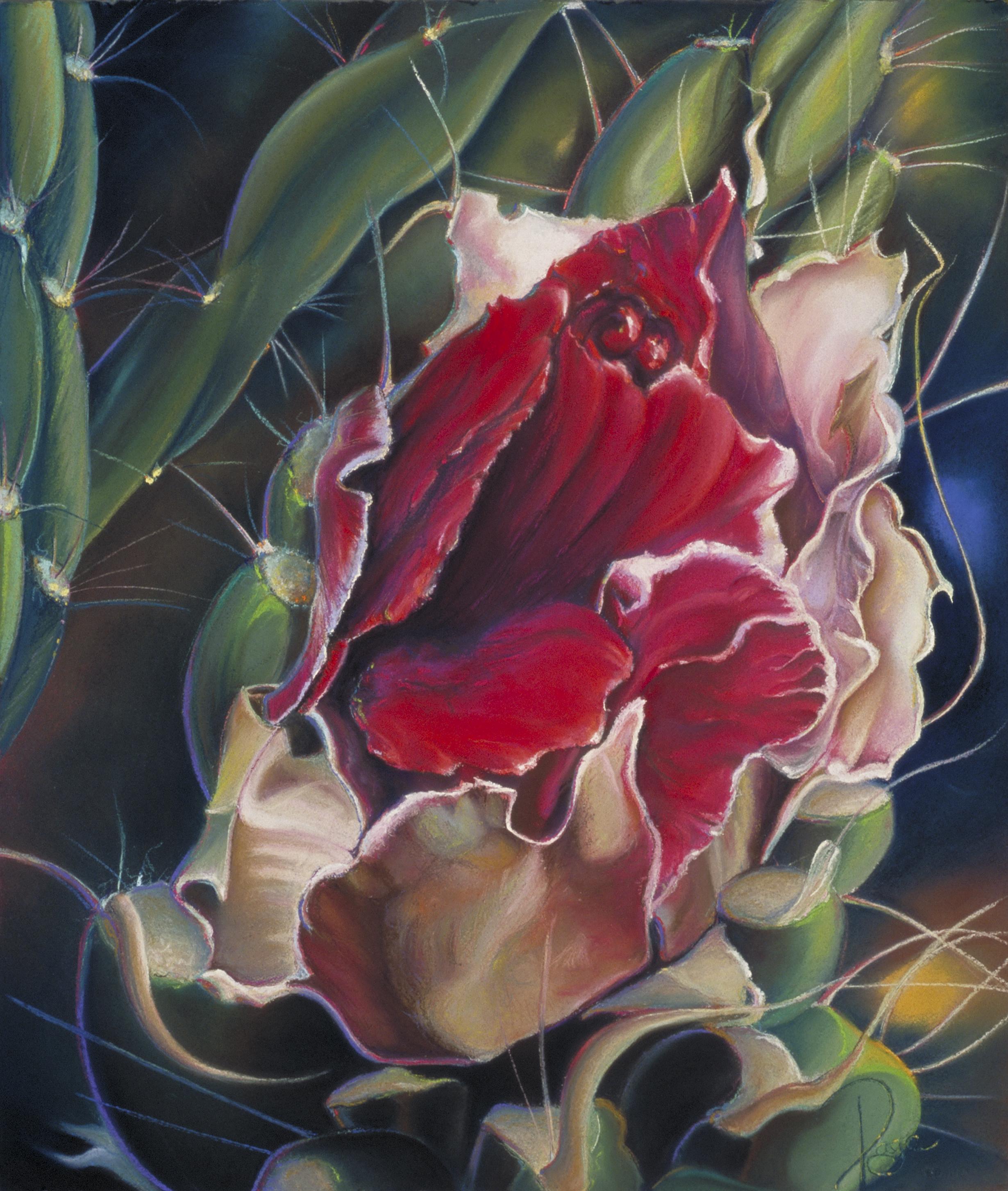 Chimayo Cactus