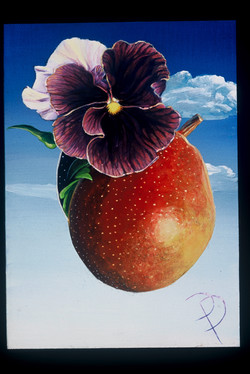 Pansy and the Golden Pear