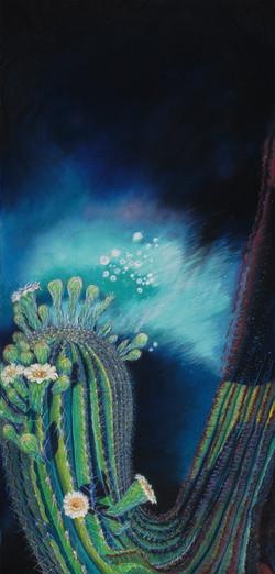 Aurora Borealis Cactus Flower