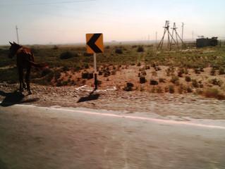 Le Kazakhstan, en marche pour le climat sur les « nouvelles routes de la soie »
