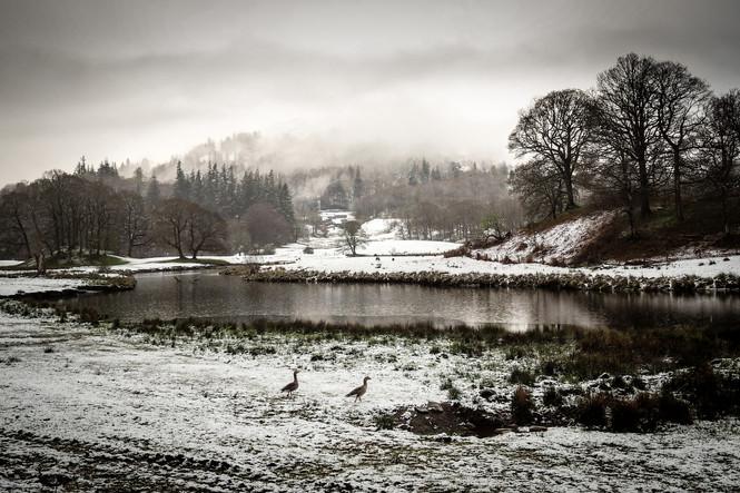 The Misty Lake