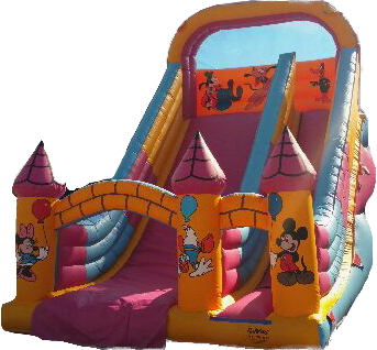 SLIDE hire inflatale disney bungeestar.com