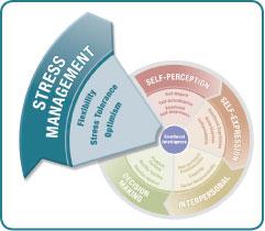 The EQ-i 2.0® and EQ-360™ instruments measure emotional intelligence (EI)