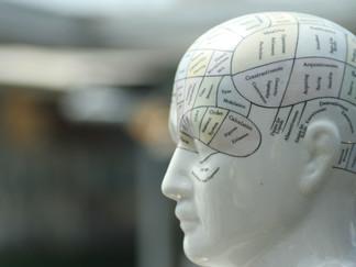 Emotional Intelligence: A Vital Trait of Leadership