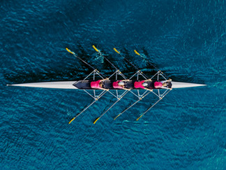 Understanding High Performance Team and What Makes them Tick