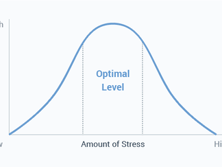Understanding & Preventing Stress in the Workplace