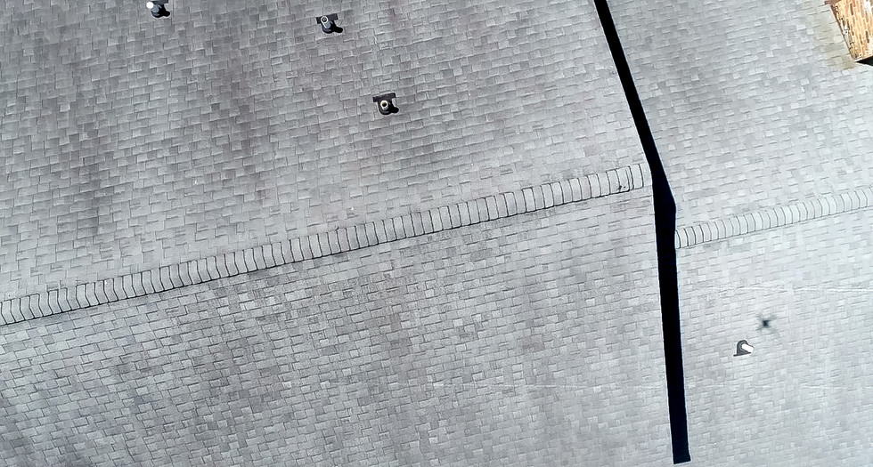 Roof Top Inspection.jpg
