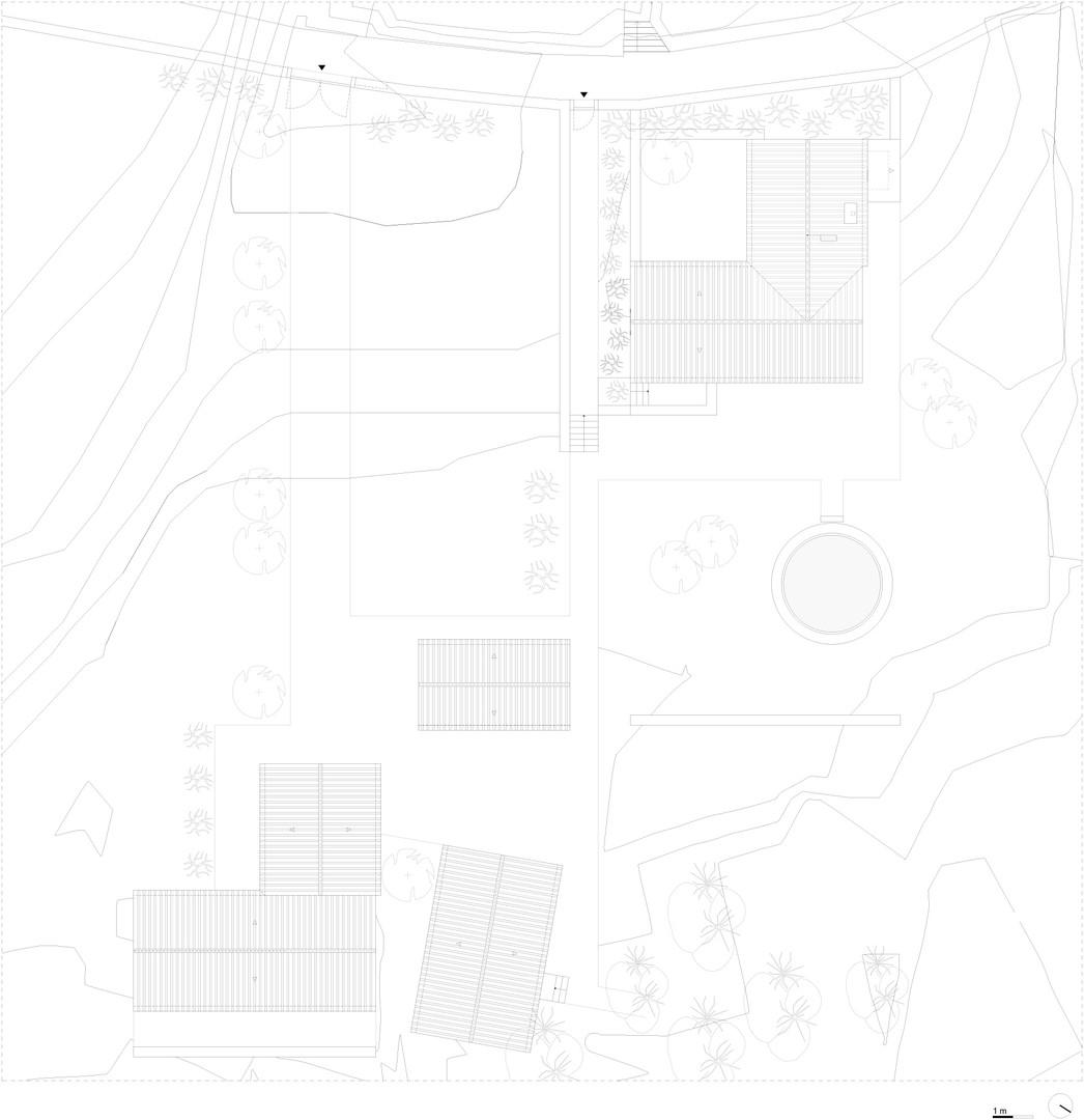 03 FBELO-plantas 3 copy.jpg