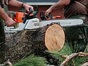 chain saw 3.jpg