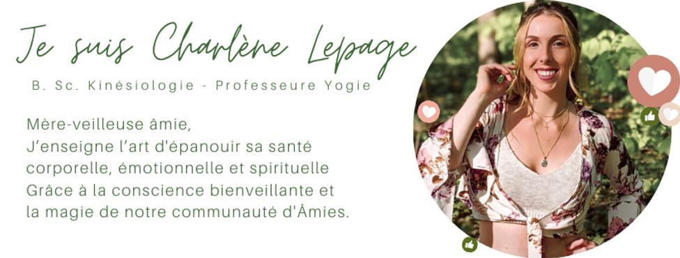 BANNIÈRES DE LUMIÈRE (34).png