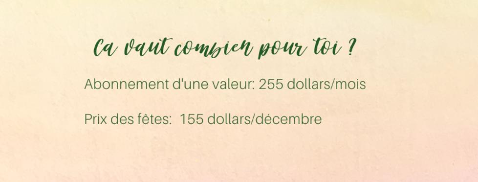 BANNIÈRES DE LUMIÈRE (29).png