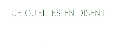 BANNIÈRES DE LUMIÈRE (44).png
