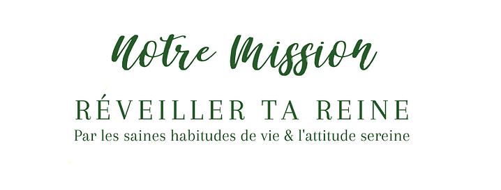 BANNIÈRES DE LUMIÈRE - 2020-12-25T110037