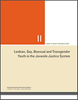 LGBTQ-in-JJ-System.png