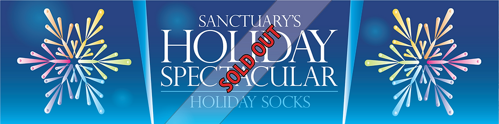 2019 HS Sold Out Banner.png
