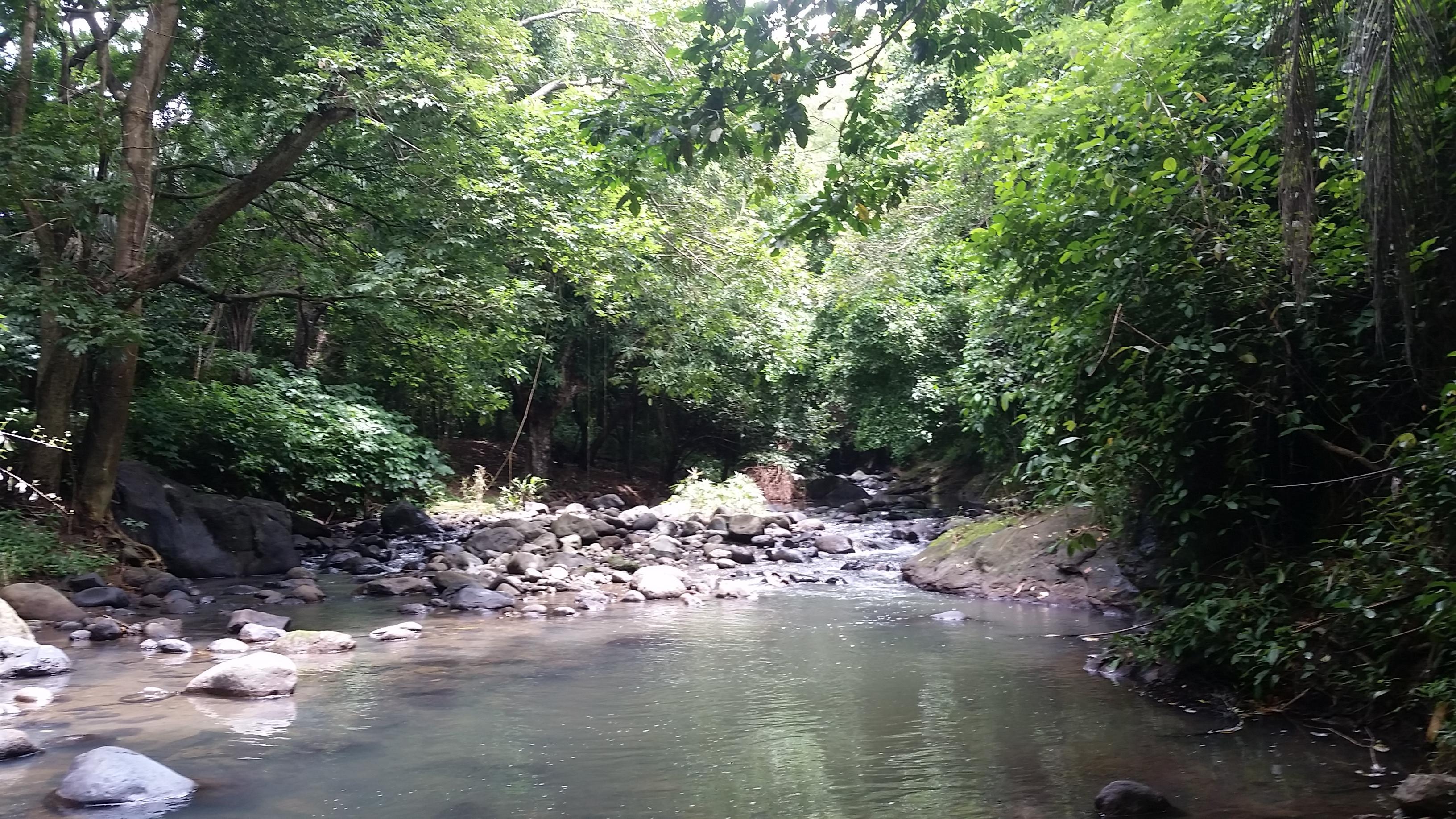River Hike