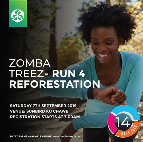 Run 4 Reforestation: 2 weeks to go :)