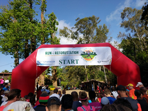 Run 4 Reforestation: What a day!!!