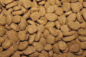 Pet Nutrition Advice