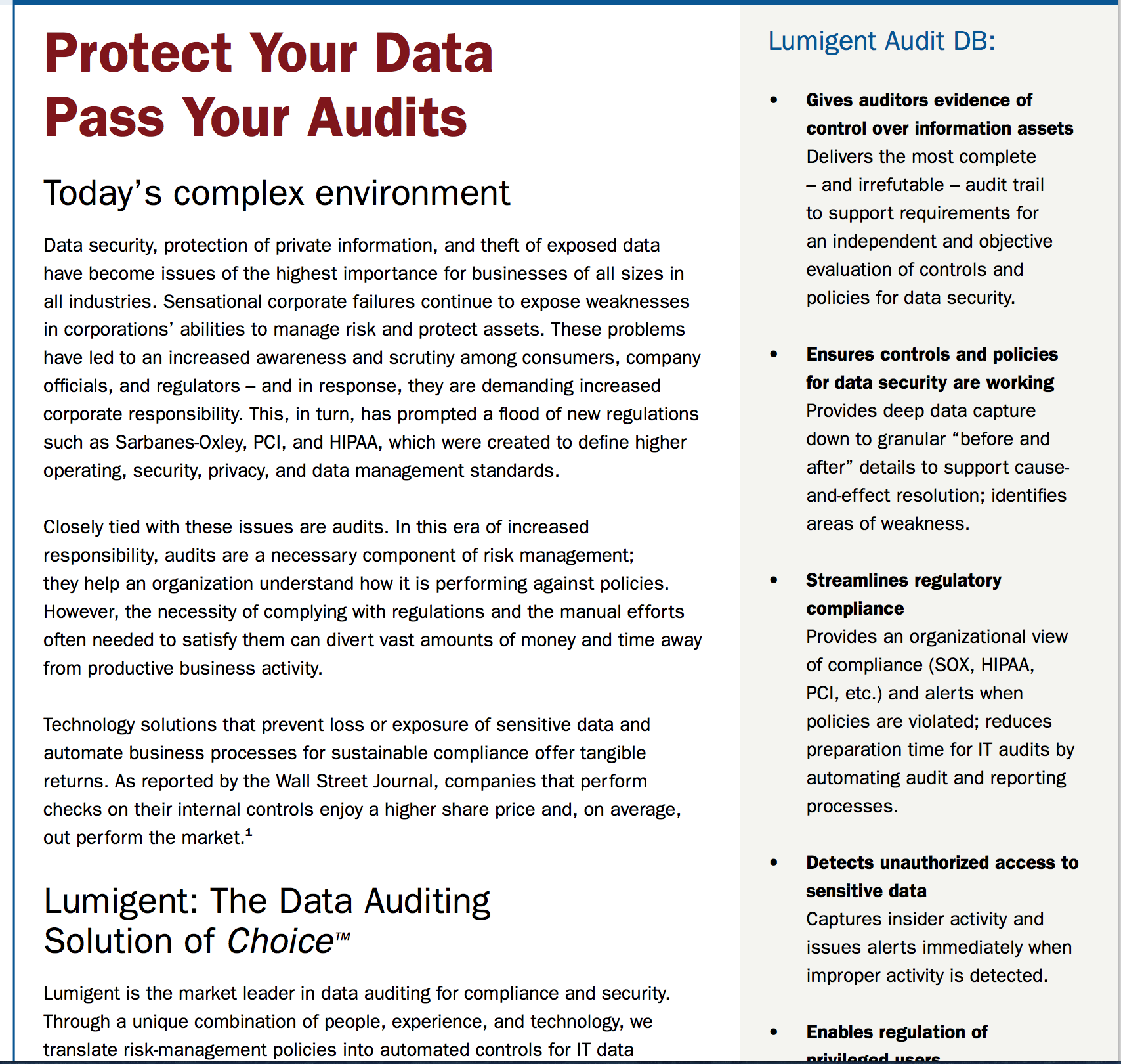 Lumigent Data Security Brochure