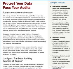 Lumigent Data Security Brochure