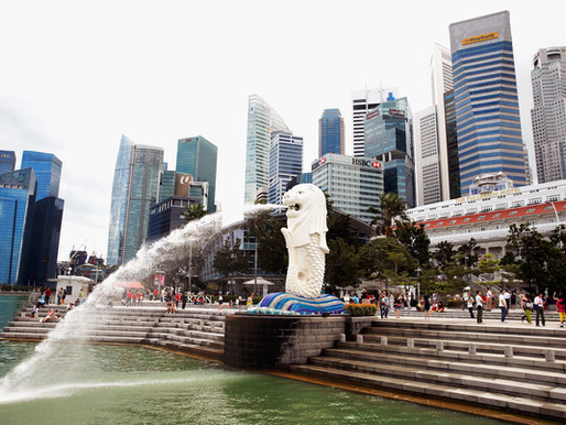 Has Singapore built sufficient assets to ensure its resilience and survival in a crisis?