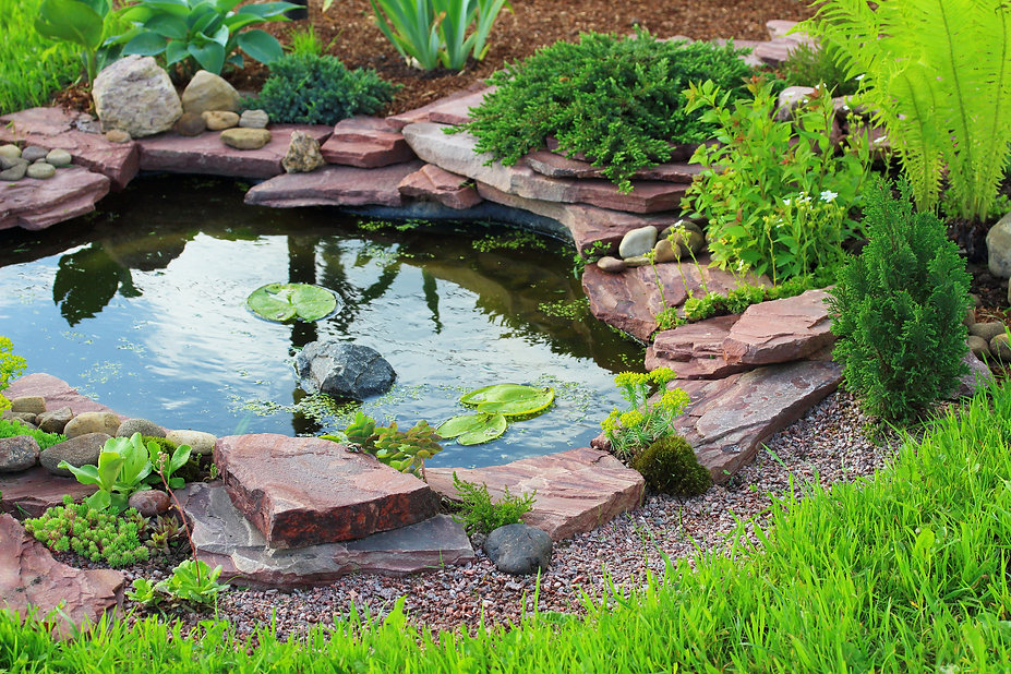 Leading landscaper in Los Angeles