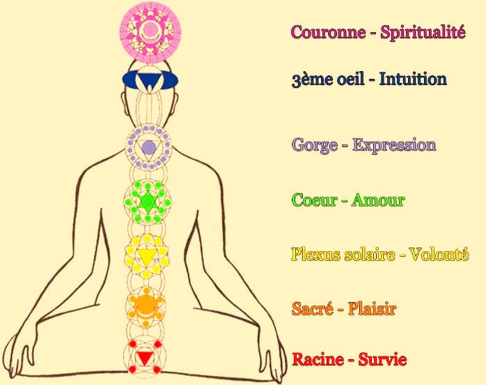 Les 7 principaux chakras et l'épisiotomie