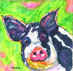 blackwhite pig.jpg