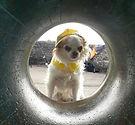 PHOTO-2020-03-04-20-20-31_edited.jpg