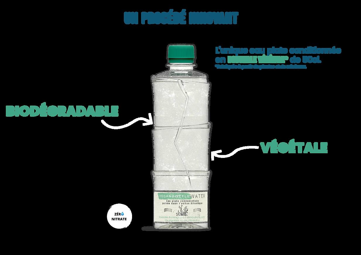 présentation 1 veganbottle water PNG.png