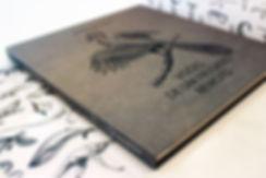 ibsen_book_003780x520.jpg