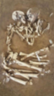 Alex Papp music In My Bones in my bones song songs songwriter singer ny brooklyn new york dirt floor recording studio
