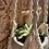 Thumbnail: מתלה מקרמה לעציץ