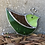 Thumbnail: ציפור ויטראז