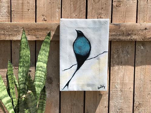 ציפור גווני כחול