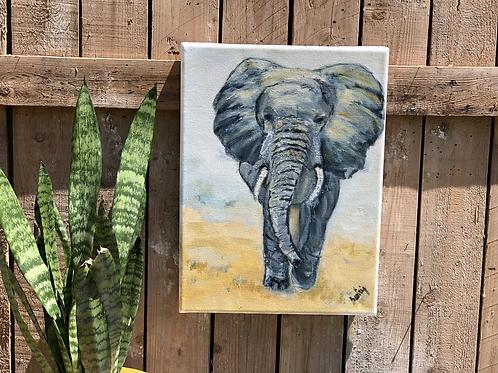 דמותו של פיל