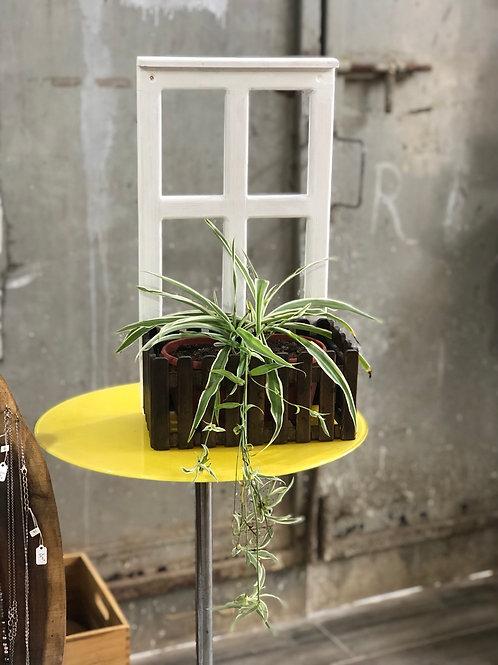 אדנית עם חלון עץ לתליה