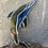 Thumbnail: דולפין ויטראז׳