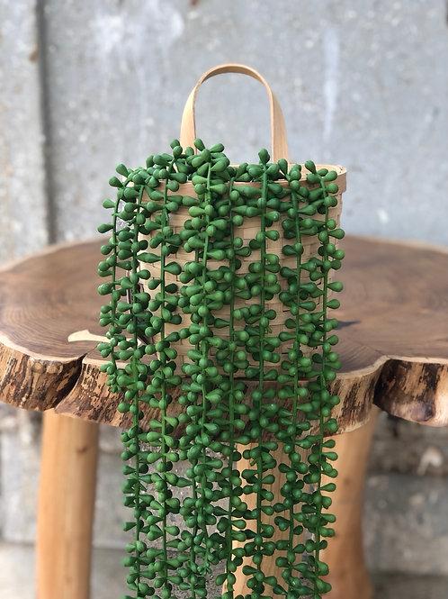ירוק עד