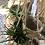 Thumbnail: עציץ קש לתליה