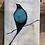 Thumbnail: ציפור גווני כחול