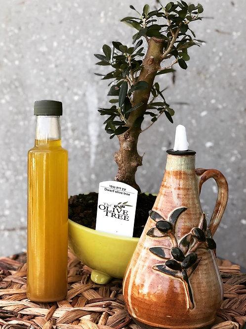 מארז עץ הזית