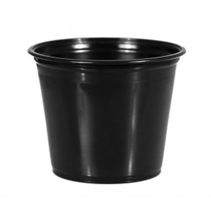 jet black rinse cups 250ct 5.5oz
